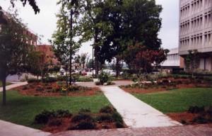 Benedict Mini Park